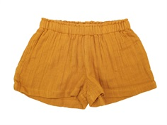 MarMar shorts Pala pumpkin pie