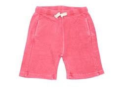 Small Rags shorts garnet rose