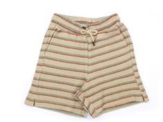 Soft Gallery shorts Alisdair mojave desert